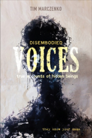 Cover of Disembodied Voices: True Accounts of Hidden Beings