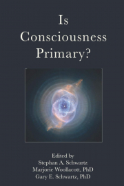 Cover of Is Consciousness Primary?