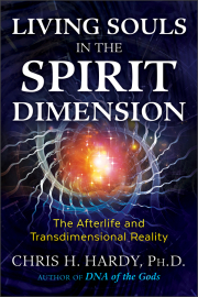 Cover of Living Souls in the Spirit Dimension