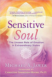 Cover of Sensitive Soul