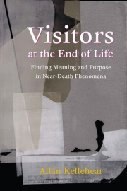 Cover of Visitors at the End of Life
